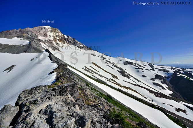 mcneil point peak mt hood hike view oregon timberline trail #600 postcard