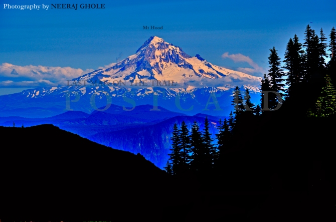 mt hood silver star mountain washington oregon postcard