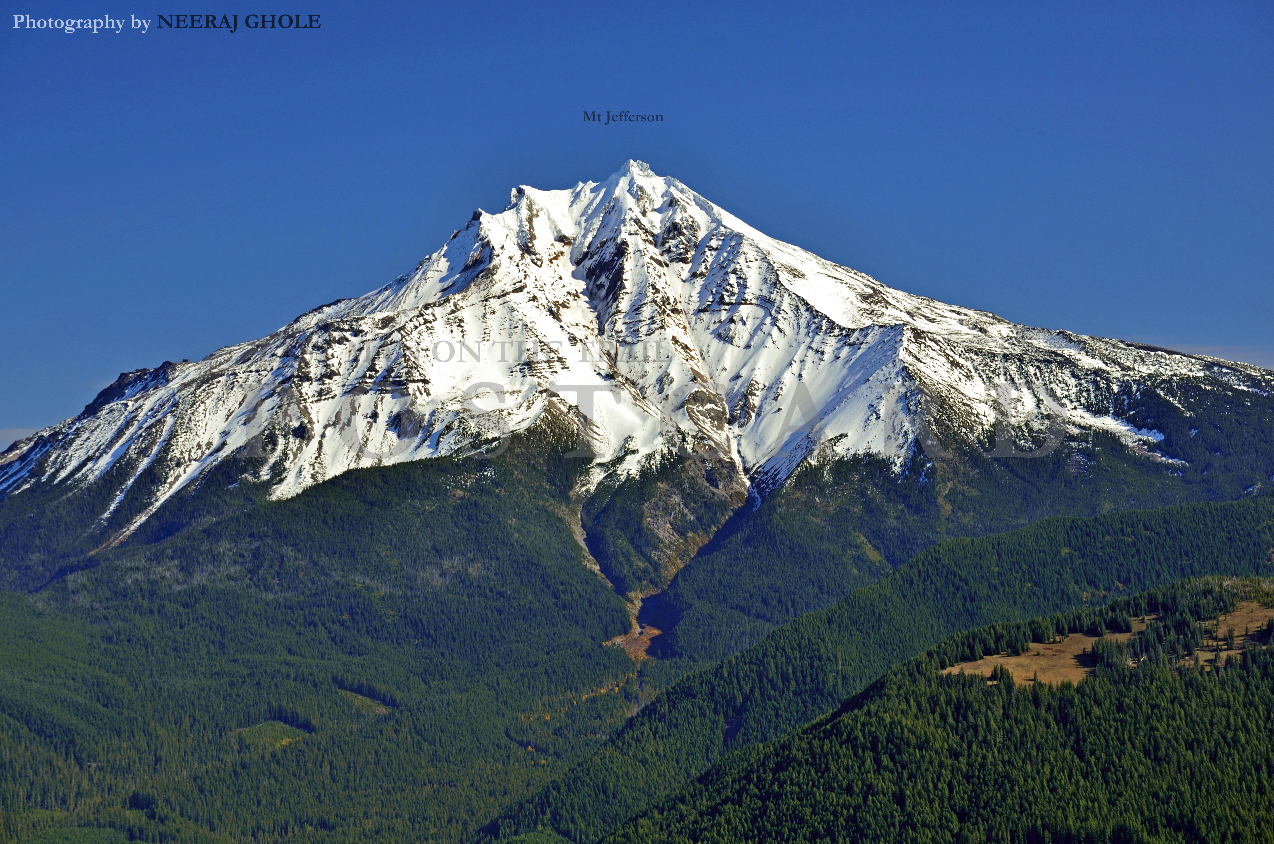 how tall is bachelor mountain