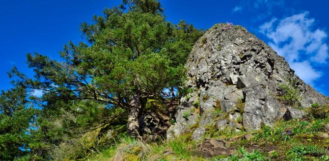 munra point hike panorama columbia gorge exit 35 elowah falls trail no 400